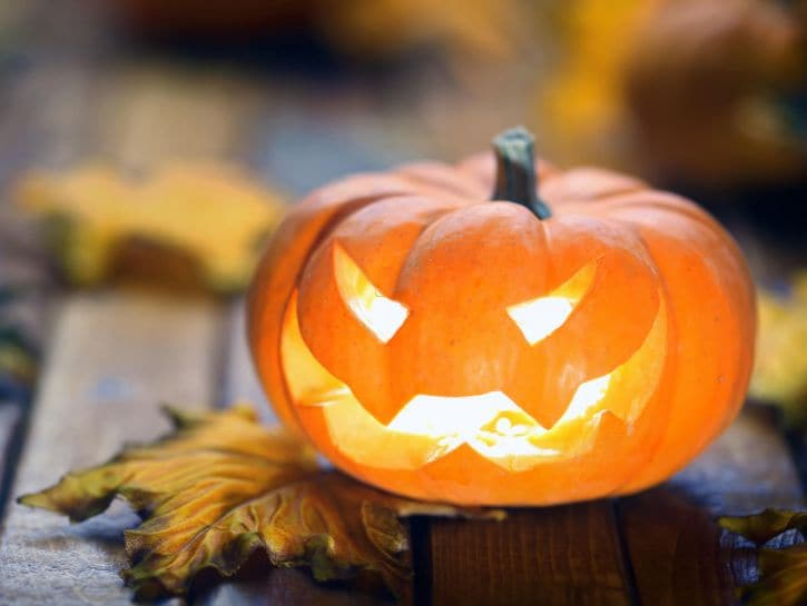 zucca doi halloween